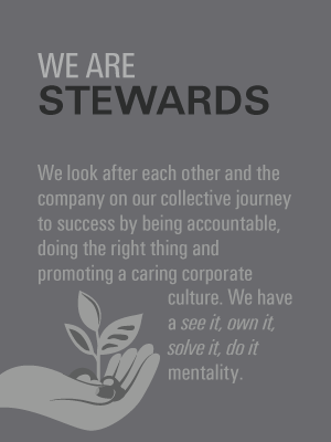 Stewards-Values