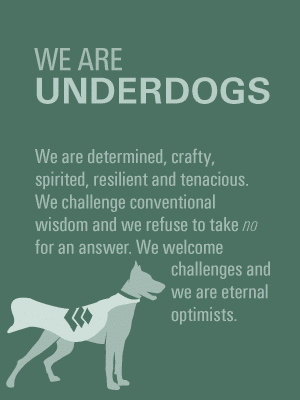 Underdogs-Values