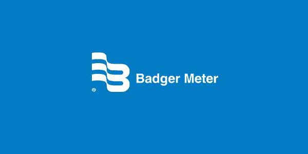 Badgermeter Case Study